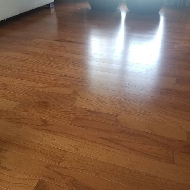 Hardwood floor after Cleaning